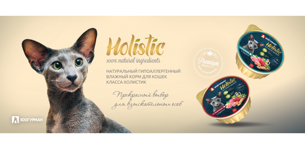 Holistic_cat