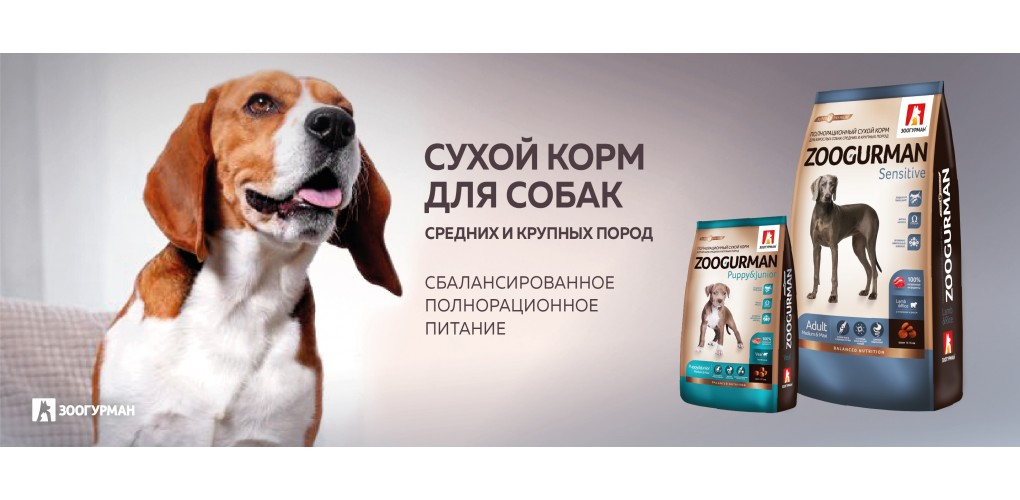 SuhoyKorm_bigDOGs