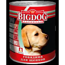 Влажный корм для собак БигДог (BigDog), Говядина для щенков, 850г